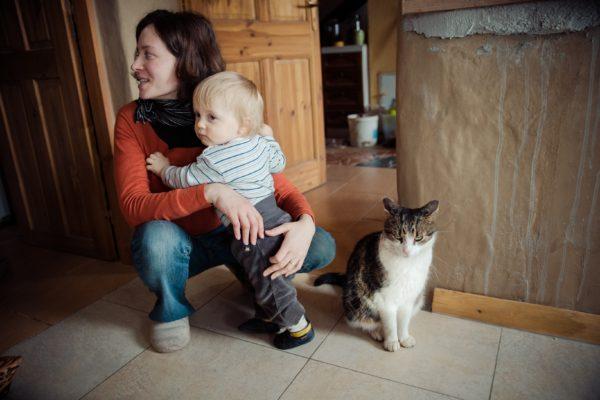 vinco-the-cat-ii